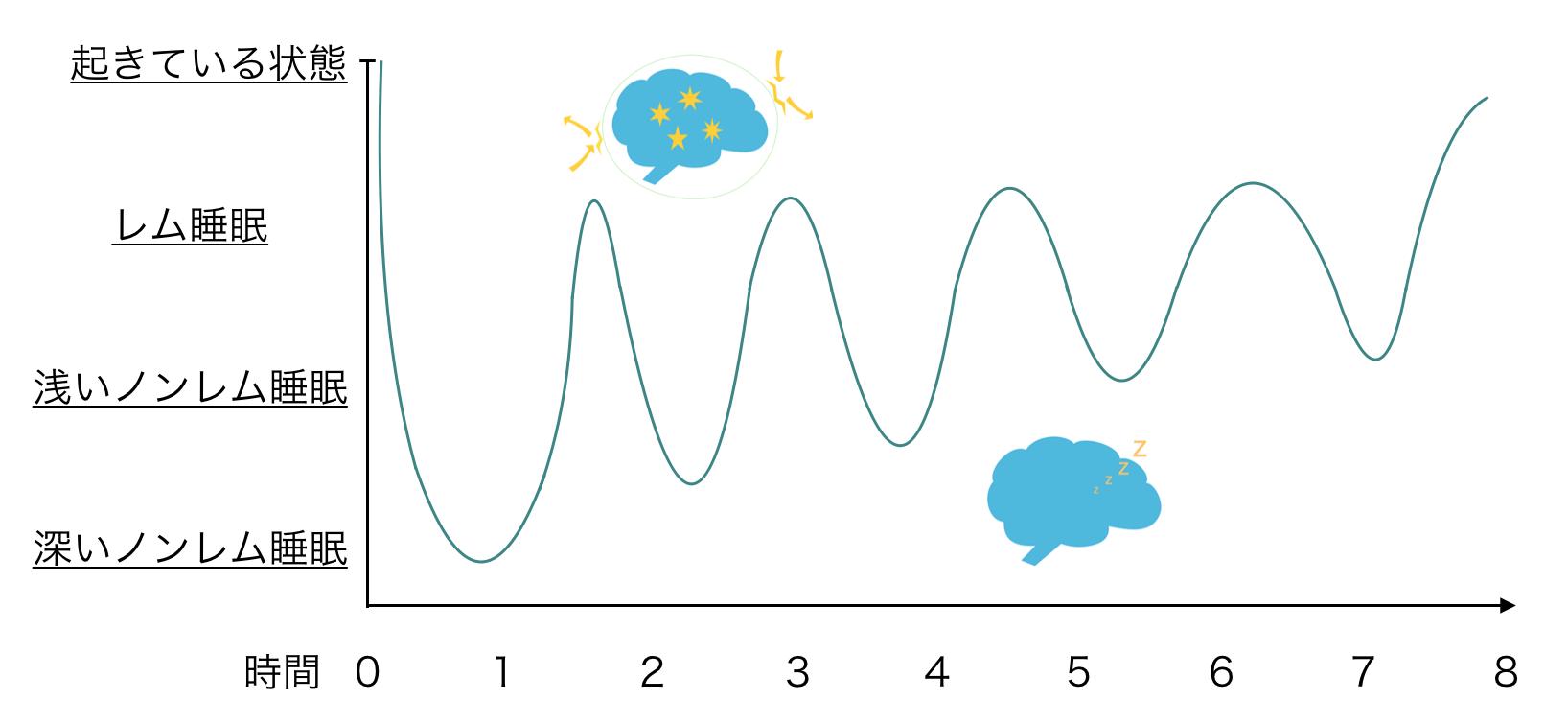 レム睡眠とノンレム睡眠の睡眠サイクル